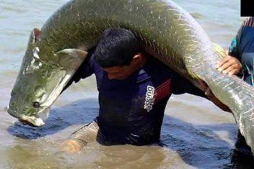 Gigante de quase 2m foi a estrela da Gincana de Pesca