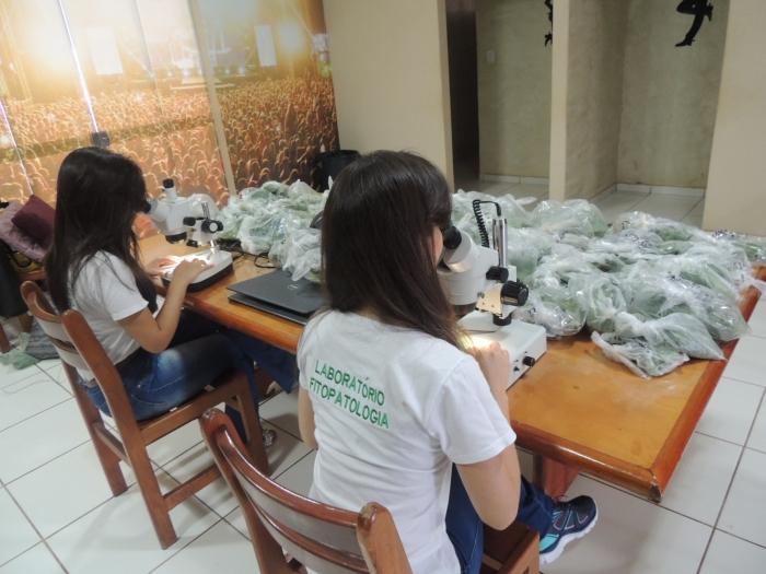 Laboratório de Fitopatologia do Sindicato Rural