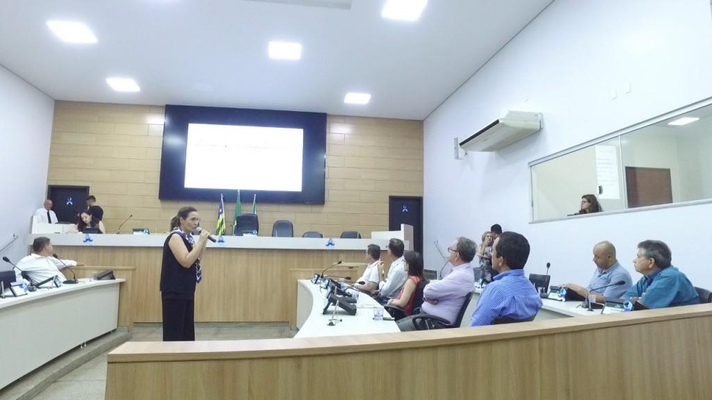 A consultora Magaly Romão apresentou o diagnóstico e as possíveis soluções para o serviço.